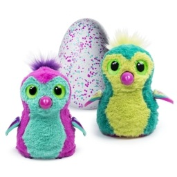Picture of hatchimals