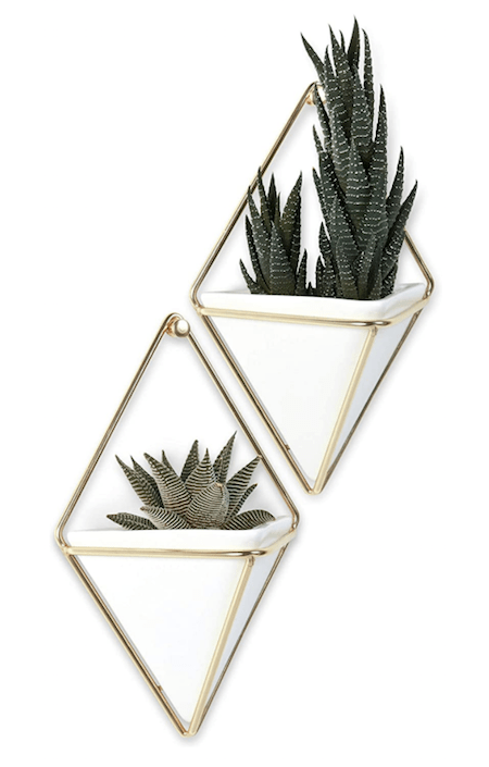 Cute Home Office Décor picks from Amazon | Cartageous.com/Blog