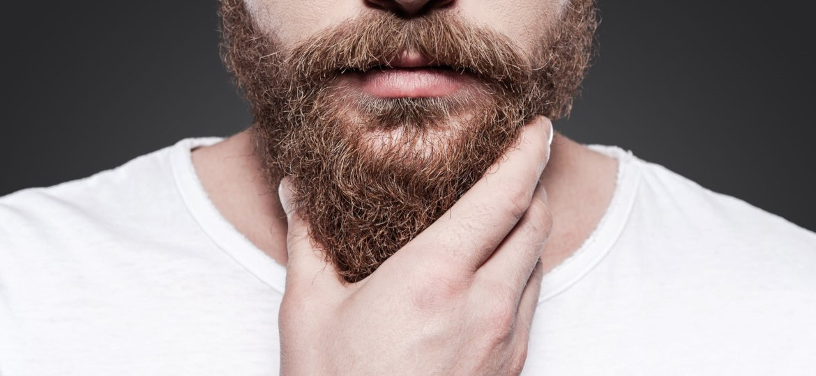 Man holding his well groomed beard.