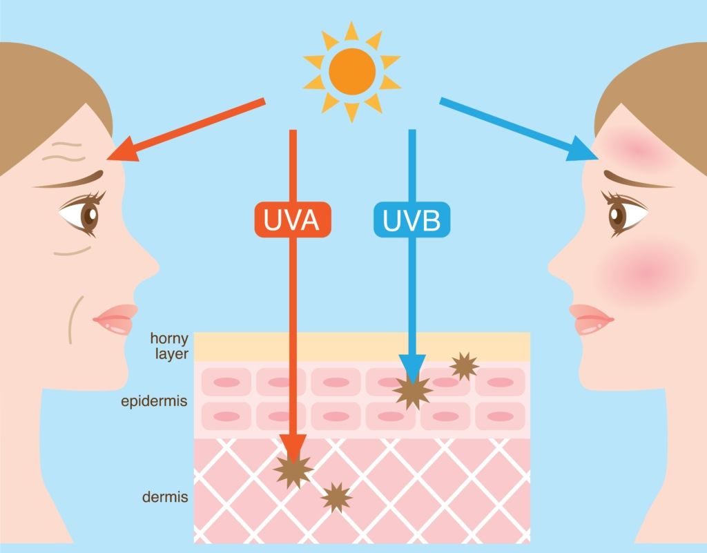 Infographic showing differences between UBA and UVB sunlight exposure.
